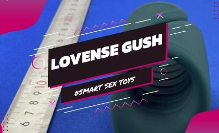 Lovense Gush FCC